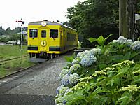 Isumi350_20160531_02