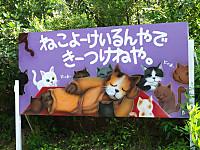 S_fukui20160814_70