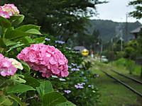 Isumi350_20160615_02