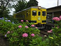 Isumi350_20160615_04