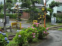 Isumi350_20160622_04