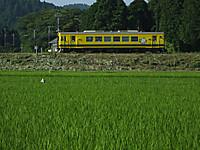 Isumi350_20160707_03