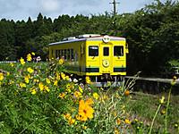 Isumi350_20160804_14