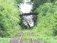 Isumi_rail20160823_06