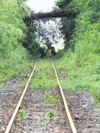Isumi_rail20160823_07