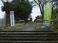 Kominato20170408_75