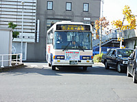 Ibaraki20161113_13
