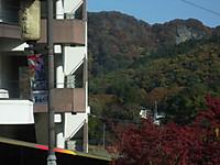Ibaraki20161113_47