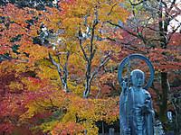 Ibaraki20161113_80