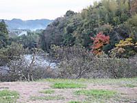 Isumi_higasifusamoto20161129_06_2