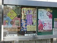 Sakura20161202_17