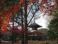 Asikaga20161204_63