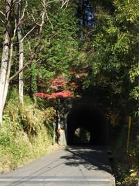 Kururi20161211_32
