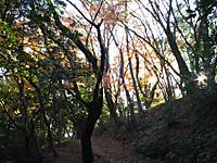 Kururi20161211_33