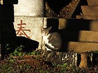 Isumi_nakagawa20161228_01