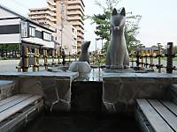Yamaguchi20170827_126
