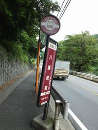 Kyoto20170830_58