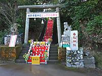 Katsuura20170226_03