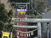 Katsuura20170226_26
