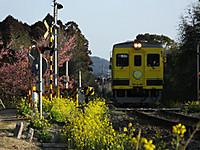 Isumi350_20170228_01