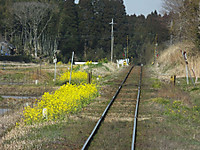 Isumi_rail20170318_17