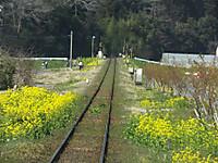 Isumi_rail20170318_21