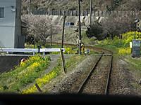 Isumi_rail20170318_33