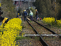 Isumi_rail20170320_11