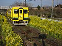 Isumi350_20170322_02