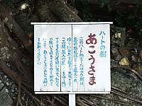 Yushima20180106_67