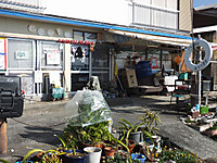 Yushima20180106_86