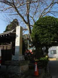 Tateyama20180121_11