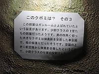 Tateyama20180121_59
