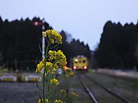 Isumi350_20170405_10