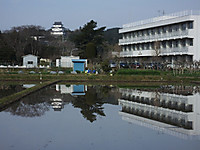 Isumi_otaki20170405_07