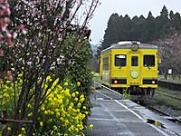 Isumi350_20170408_05