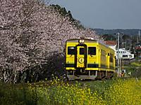 Isumi350_20170410_01