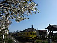 Isumi350_20170416_04