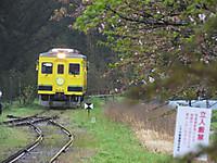 Isumi350_20170418_02