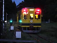 Isumi300_20170522_05