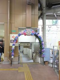 Hakonetozan20170626_16