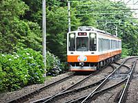 Hakonetozan20170626_51