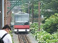 Hakonetozan20170626_57