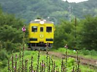 Isumi350_20170810_03