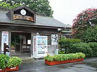 Isumi_nakano20170917_006