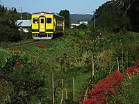 Isumi350_20170918_01
