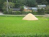 Isumi_rail20170924_07