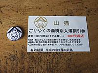 Yamaneko20170924_05