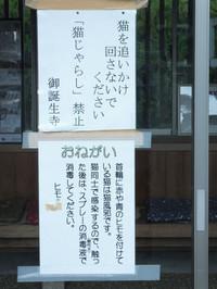 Takefu20171009_005