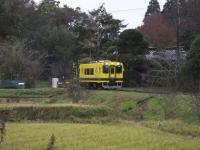 Isumi300_20171108_02